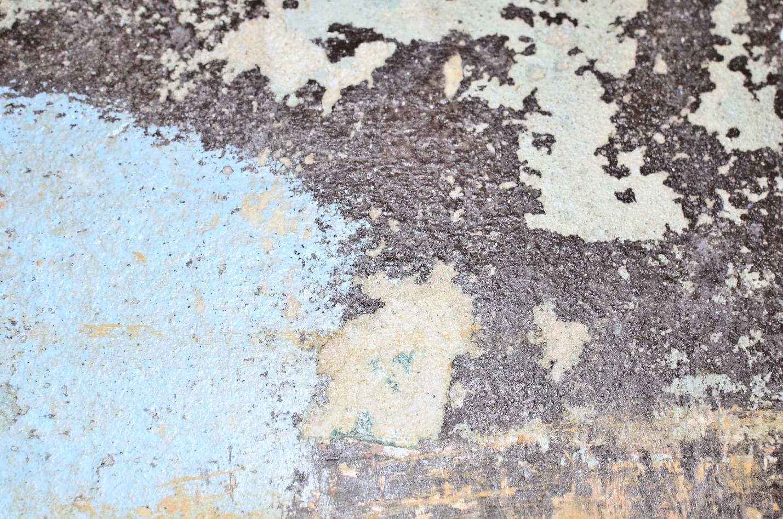 Water-damaged walls promote mildew breed