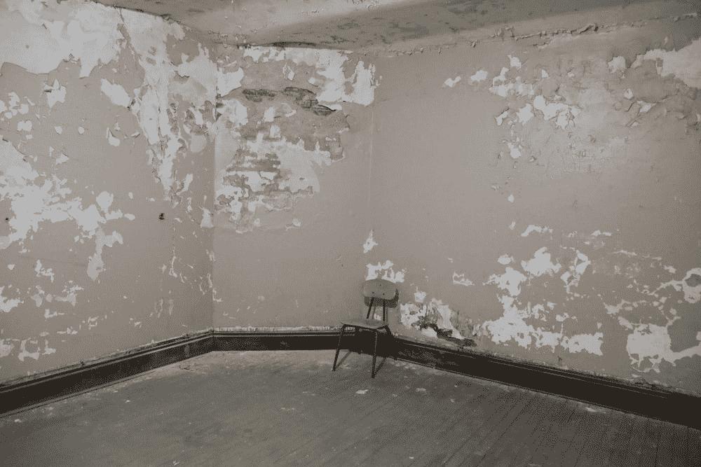 a moldy basement